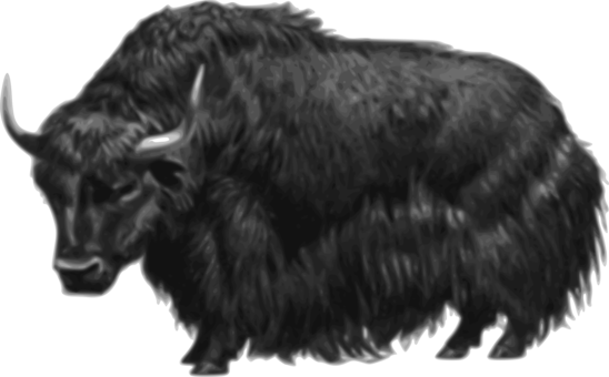 Domestic Yak American Bison Download Mammal Free Commercial Clipart