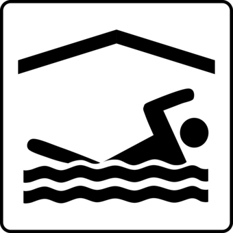 Swimming Pool Computer Icons Download Noodle