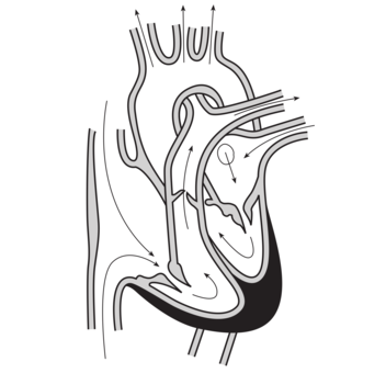 Drawing anatomy heart diagram organ free commercial clipart heart diagram human anatomy drawing free clipart ccuart Image collections