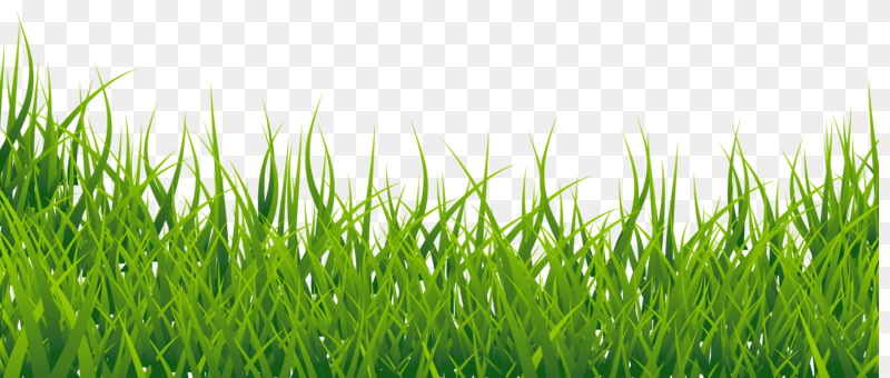 lawn grasses computer icons download artificial turf free png