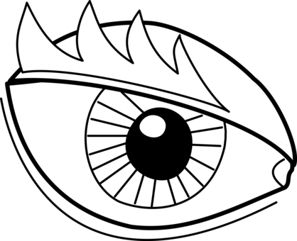 Iris Eye Organ Png Clipart Royalty Free Svg Png