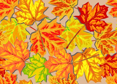 Autumn leaf color Maple leaf - free clipart