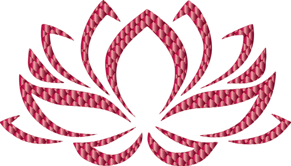 Sacred Lotus Lotus Position Yoga Symbol Flower Free Commercial